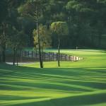 big-golf-stadium-course-golf-courses-stadium-course-6-